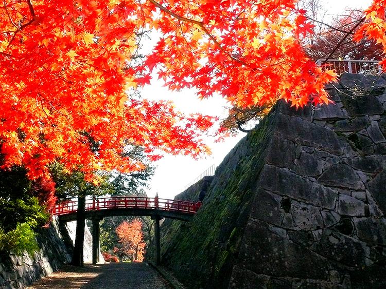 盛岡城跡公園(岩手公園)